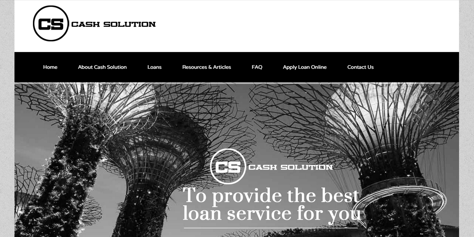 CSS Payday Loans